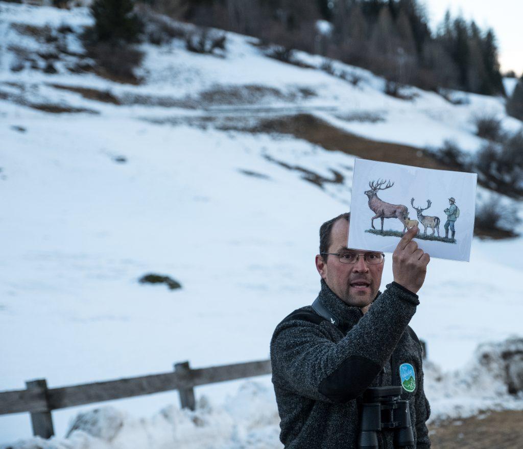 Hirschbeobachtung mit Marcel Züger