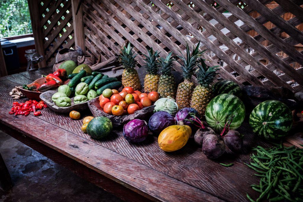 Eine kleine Auswahl an Früchten bei der La Carolina Lodge